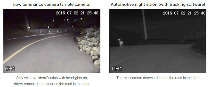 Two side-by-side images showing how vehicle night vision cameras can detect deer on the road in the dark, whereas with a low luminance camera and headlights the driver cannot d