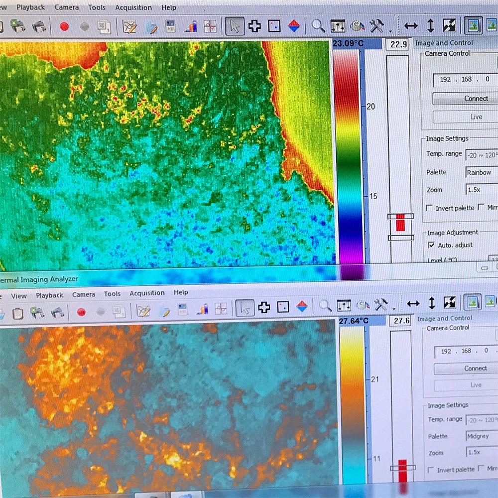 thermal imaging data on PC gathered using radiometric cameras